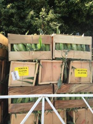 Bushels of corn